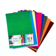 Win Plus Textured Card Stock A4 20Sheets Assorted Color