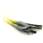 Fresh Leeks Holland 1pc